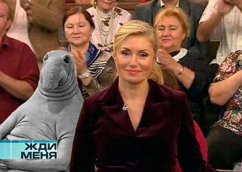 "Мария Шукшина в телепрограмме ""Жди меня"""
