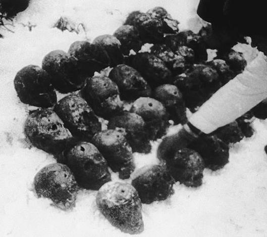 Черепа польских офицеров после эксгумации. В каждом - пулевое отверстие